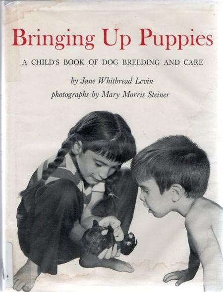 Bringing Up Puppies cover